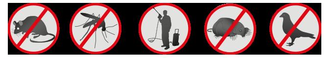 picto services : lutte contre les nuisibles